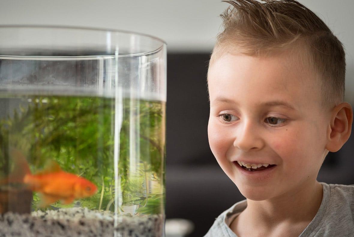 Collin (7 jaar) met zijn goudvis